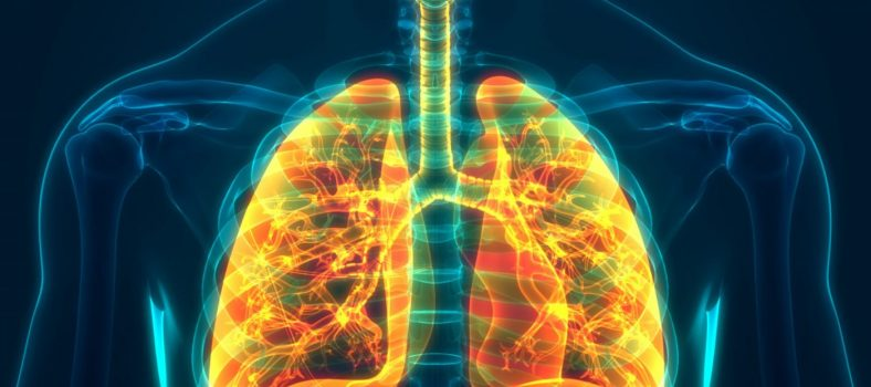 Featured image Shaping the design of a home test for monitoring chronic obstructive pulmonary disease